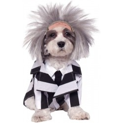 Beetlejuice Pet Dog Jacket...