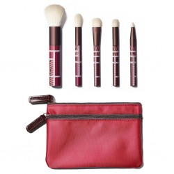 Sonia Kashuk Grand Bazaar Hidden Treasure Brush 5-Piece