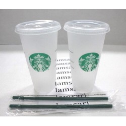 Starbucks Frosted Reusable 24 Fl Oz Venti Cold Cup Tumblers with Straws Pack of 2