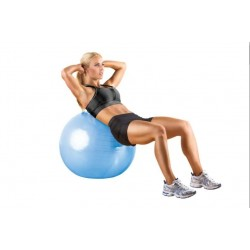 NordicTrack 65 CM Fitness Ball